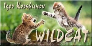 WildCat 8. WildCat_by_OAOrozco